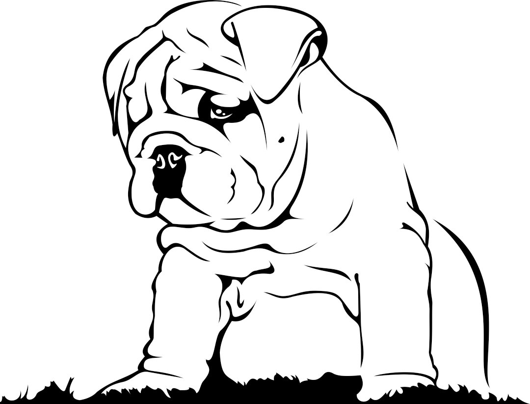 1080x822 English Bulldog Graphics Design Svg Dxf Eps By Vectordesign On Zibbet