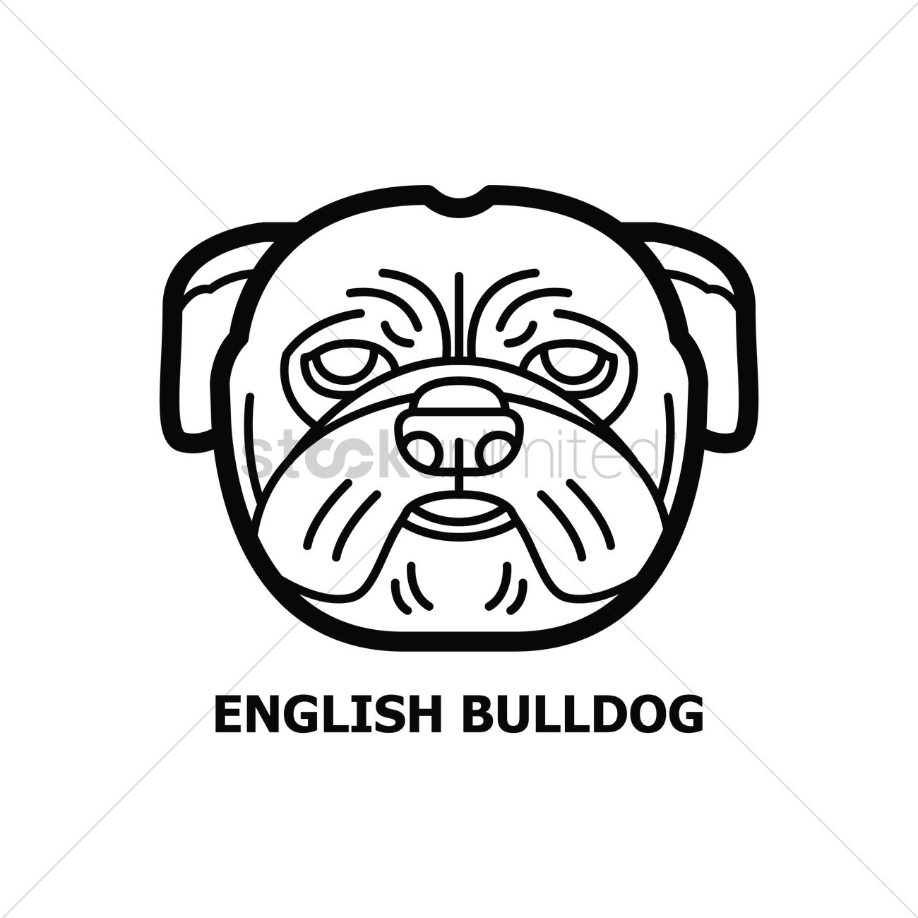 1300x1300 English Bulldog Vector Image