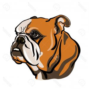 300x300 Photostock Vector Portrait Of English Bulldog Vector Illustration