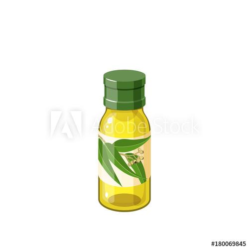 500x500 Bottle Of Eucalyptus Essential Oil. Vector Illustration Cartoon