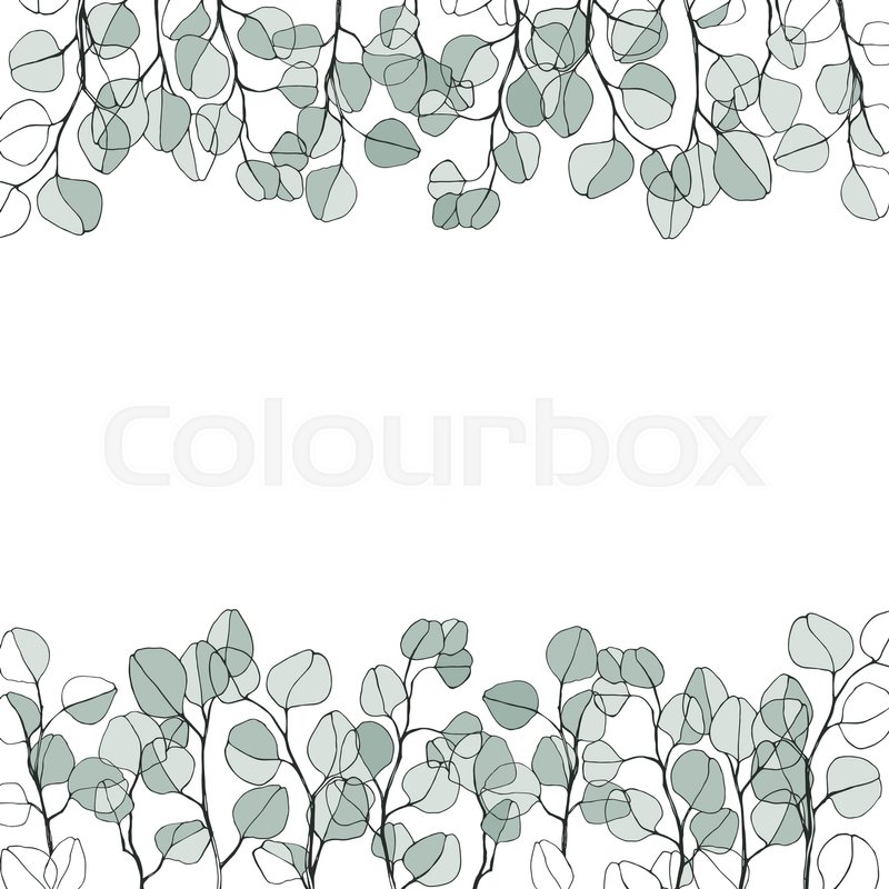 800x800 Floral Background With Hand Drawn Branches Of Silver Eucalyptus