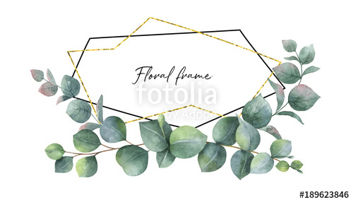 500x286 Watercolor Vector Composition From The Branches Of Eucalyptus And