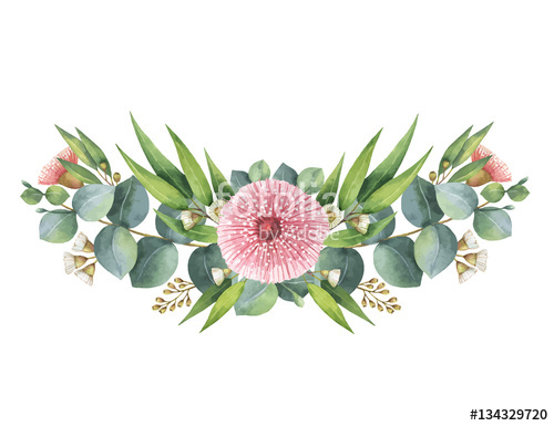 500x385 Watercolor Vector Wreath With Green Eucalyptus Leaves And Branches