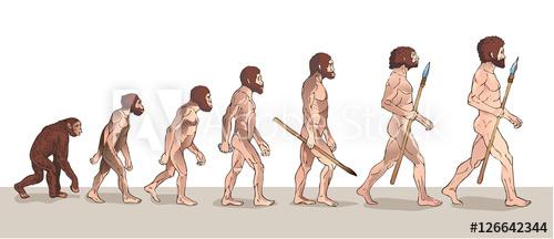 500x216 Human Evolution. Man Evolution. Historical Illustrations. Human