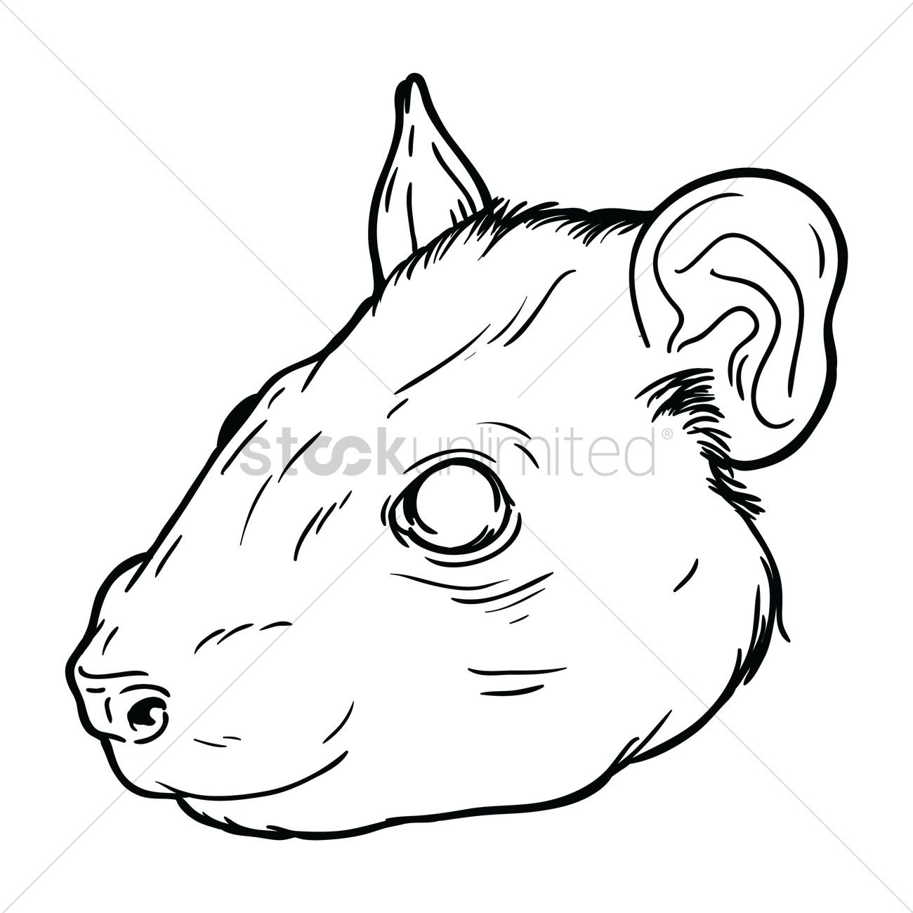 1300x1300 Free Rat Face Vector Image