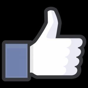 300x300 Facebook Logo Vector Black And White Orangiausa