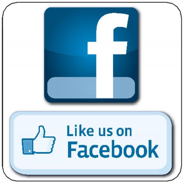 600x600 Facebook Vector Like Us