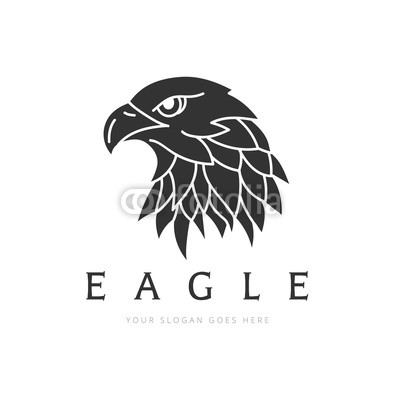 400x400 Eagle Logo, Bird Logo Set, Falcon Logo, Hawk Logo, Vector Logo
