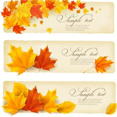 Fall Leaf Vector Free
