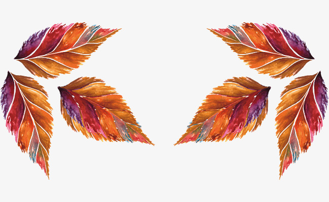 650x400 Hand Painted Watercolor Autumn Leaves, Vector Png, Autumn Leaves