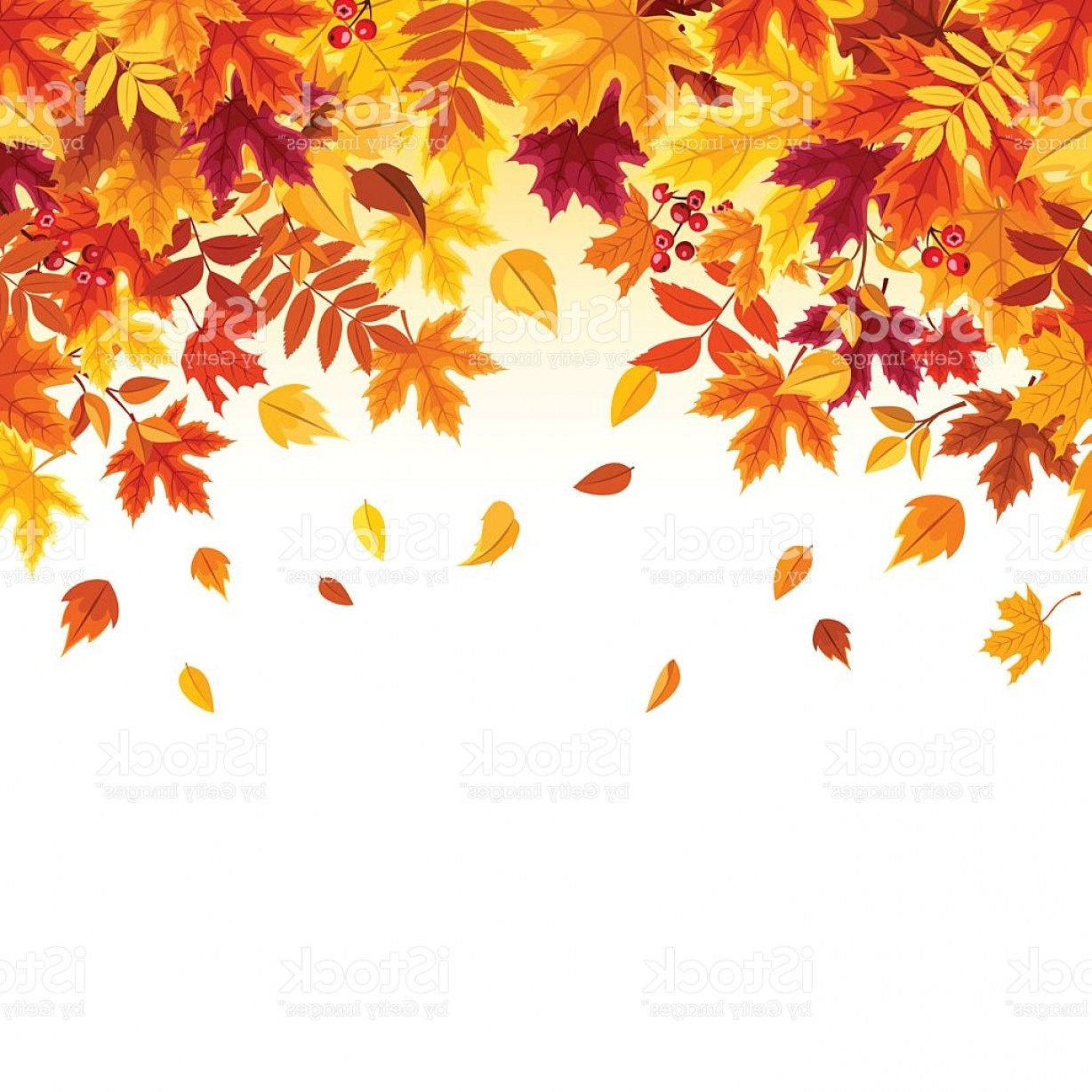 1228x1228 Background With Colorful Falling Autumn Leaves Vector Illustration