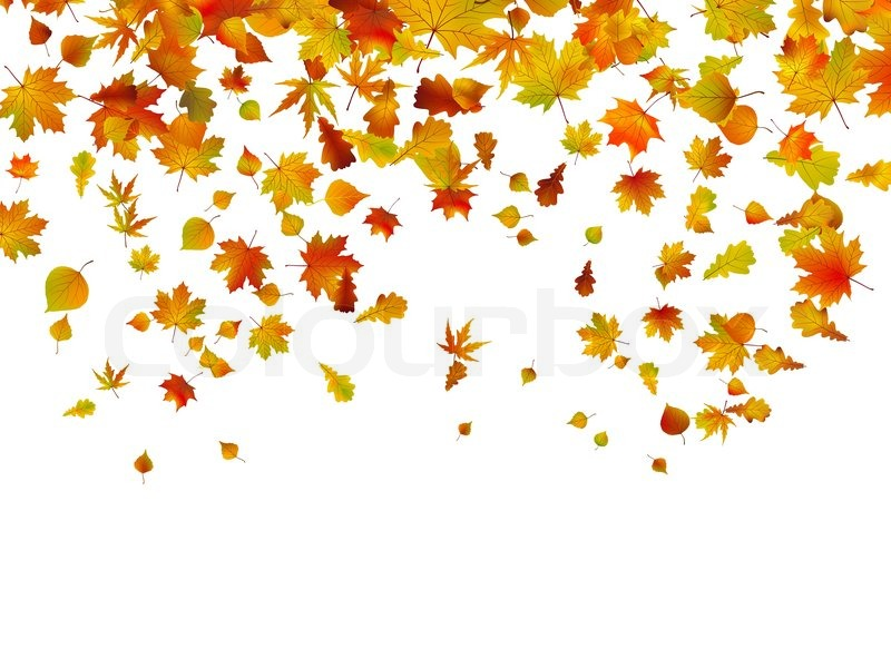 800x600 Background Of Autumn Leaves. Eps 8 Vector File Included Stock