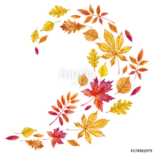 500x500 Watercolor Fall Leaves Vector Set Stock Image And Royalty Free