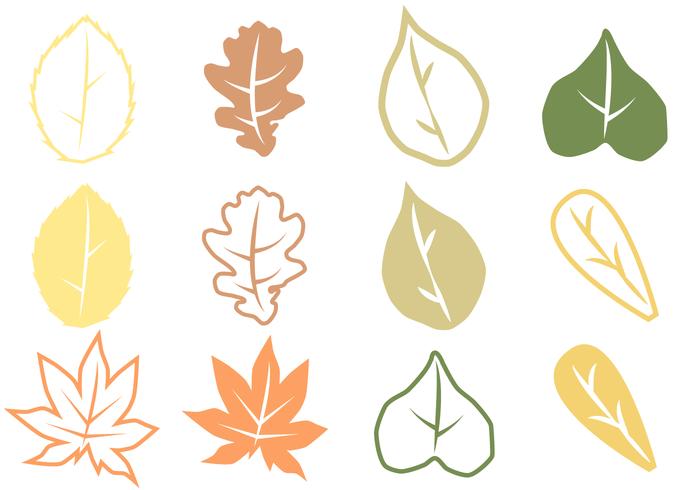 700x490 Autumn Leaves Vector