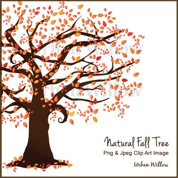 570x570 Beautiful Tree Clipart Autumn Tree Scrapbook Trees Vector Etsy