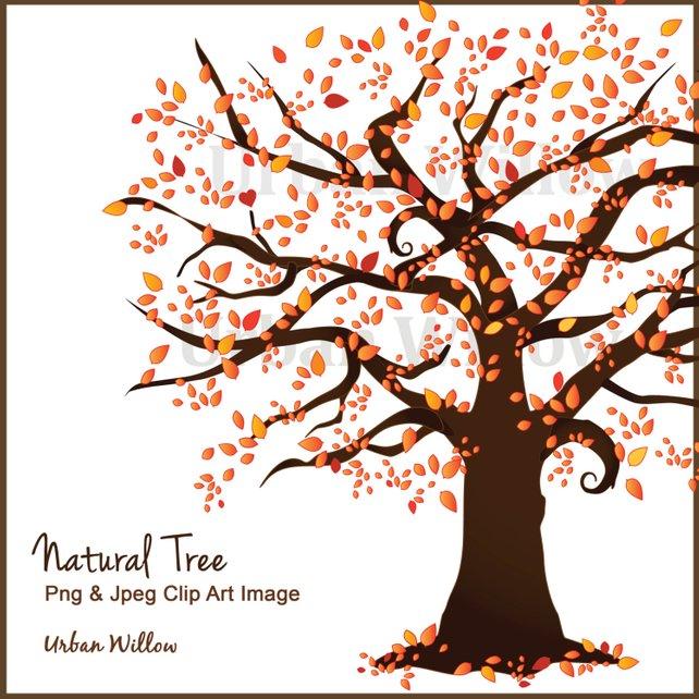 642x642 Fall Tree Clipart Clipart Autumn Tree Family Trees Tree Etsy