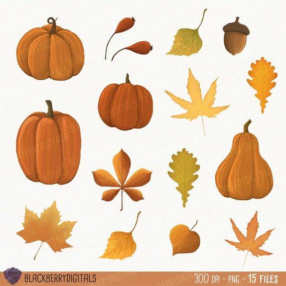 570x570 Fall Clipart Set Fall Clip Art Images Fall Vector Autumn Etsy