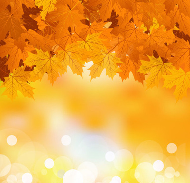 383x368 Gold Maple Leaf Pattern Background Free Vector Download (56,919