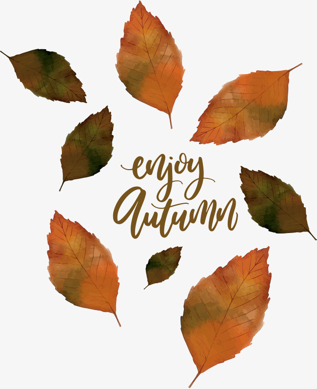 650x798 Autumn Leaves Falling In The Fall, Vector Png, The Autumn Leaves