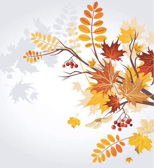 500x546 Set Of Leaf Fall Vector Backgrounds Vector Free Vector In