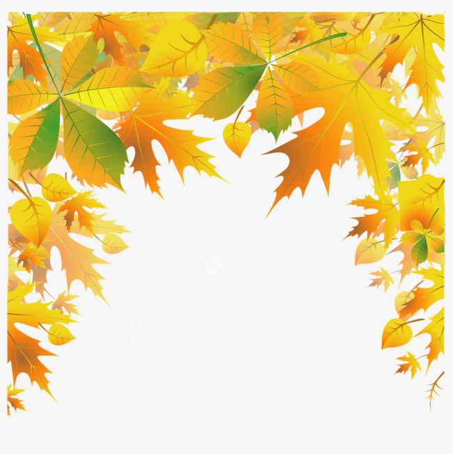 650x651 Yellow Leaves Fall Vector, Background, Frame, Leaf Png And Vector