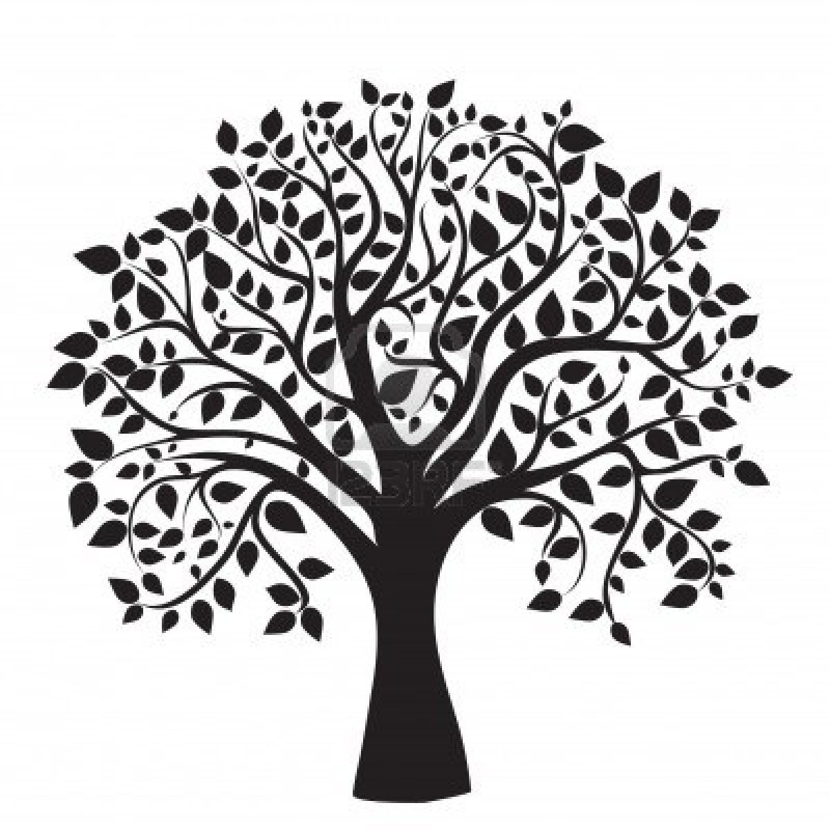 1200x1200 Collection Of Free Genealogies Clipart Magnolia Tree. Download On