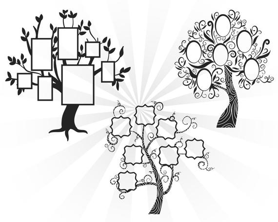 570x456 Family Reunion Svg Family Tree Svg Family Svg Cutting Files Etsy