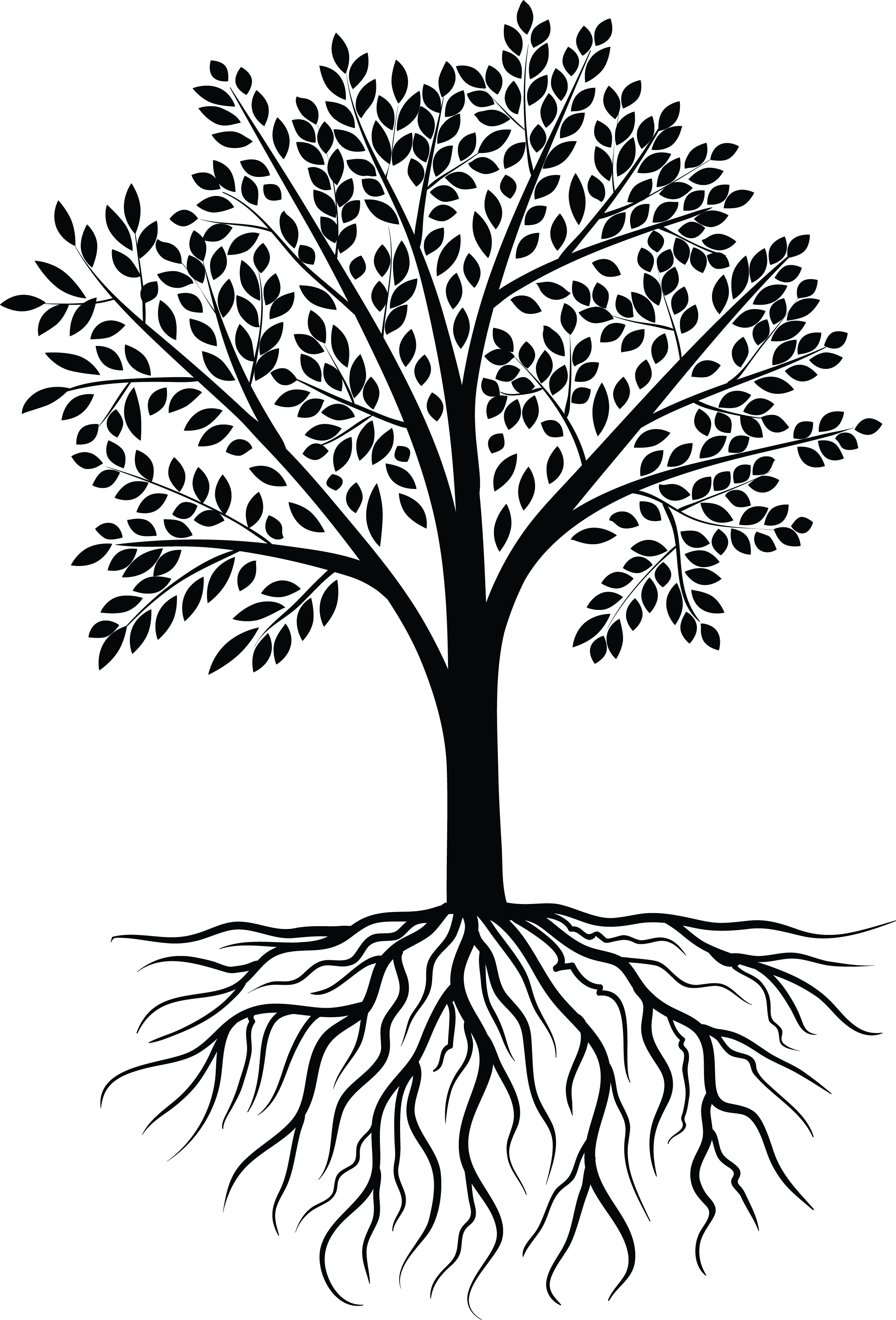 2264x3335 Family Reunion Tree With Roots Clip Art Free