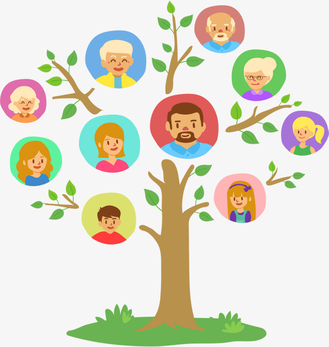 650x686 Lush Family Tree, Family Vector, Tree Vector, Vector Material Png