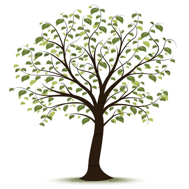 Family Tree Vector Art