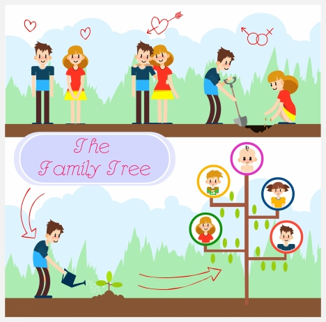 468x462 Family Tree Vector Free Vectors Stock For Free Download About (34