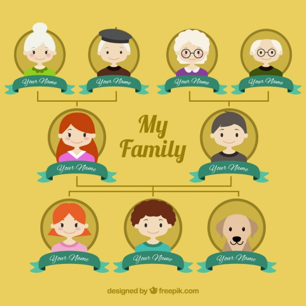 626x626 My Family Tree Vector Free Download