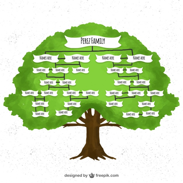 626x626 Watercolor Family Tree Vector Free Download