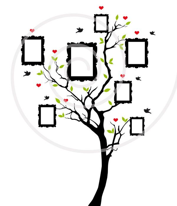600x700 Family Tree Clipart Free Download Family Tree Clipart
