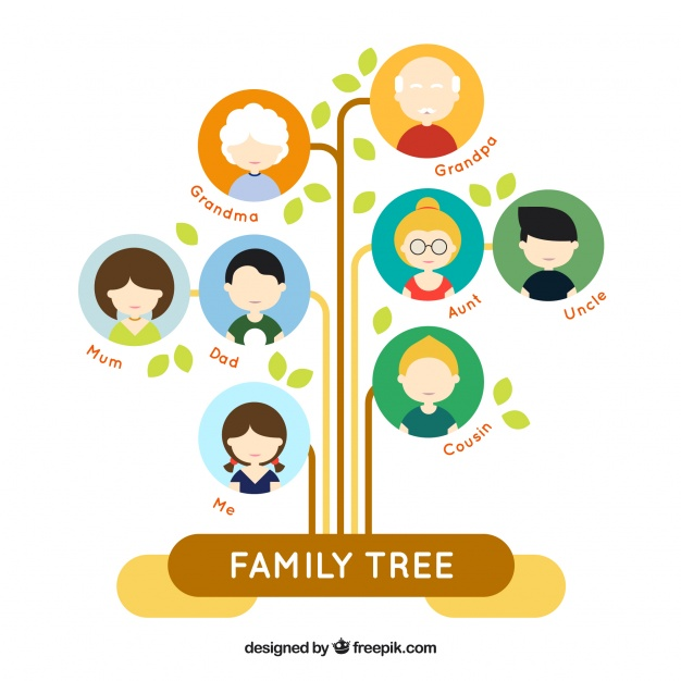 626x626 Family Tree With Pictures Fantastic Flat Family Tree With Colored