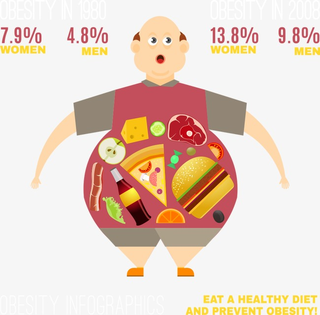 650x641 Fat Man Vector Chart, Man Vector, Chart Vector, Man Clipart Png