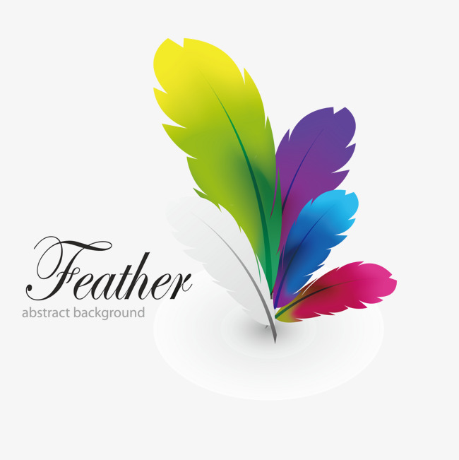 650x651 Vector Color Feather Design Logo, Vector, Design, Logo Design Png