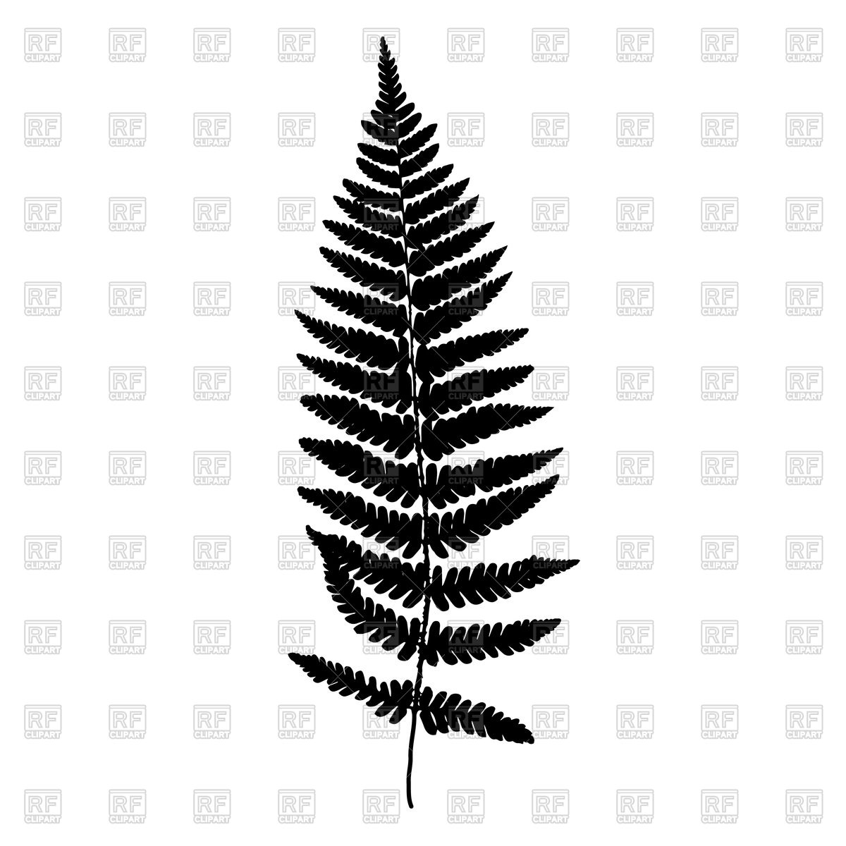 1200x1200 Fern Leaf Vector Image Vector Artwork Of Plants And Animals