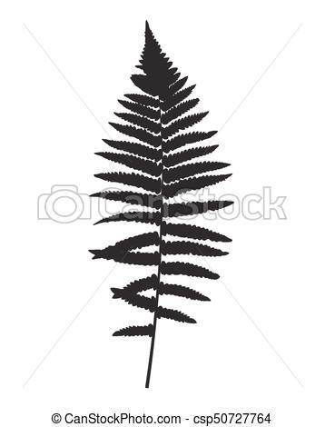 358x470 Fern Leaf Silhouette Vector Background Illustration Eps10.