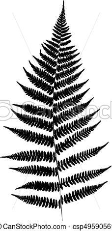 228x470 Fern Leaf Silhouette. Vector Illustration.
