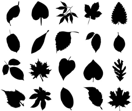 435x368 Fern Vector Free Vector Download (24 Free Vector) For Commercial