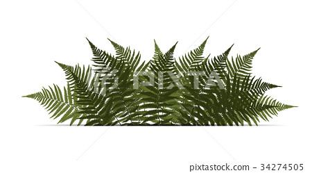 450x249 Fern Leaf Vector Background Illustration