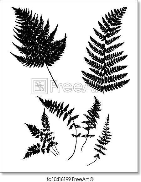 450x580 Free Art Print Of Vector Silhouette Fern . Vector Silhouette Fern