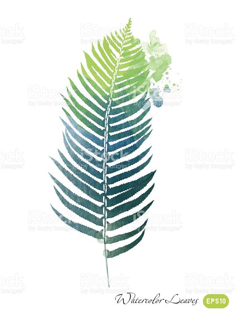 768x1024 Resultado De Imagem Para Fern Leaf] Plantes Fern