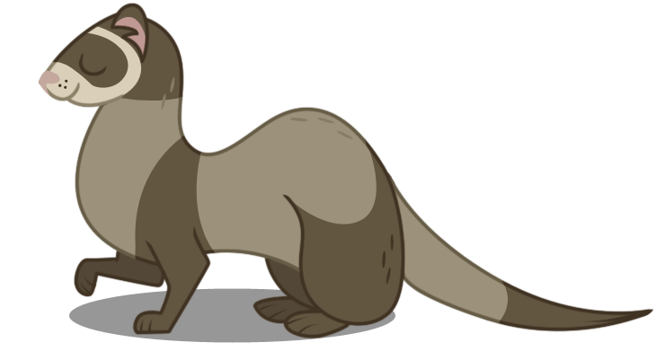 740x401 Ferret Vector By Dragonchaser123