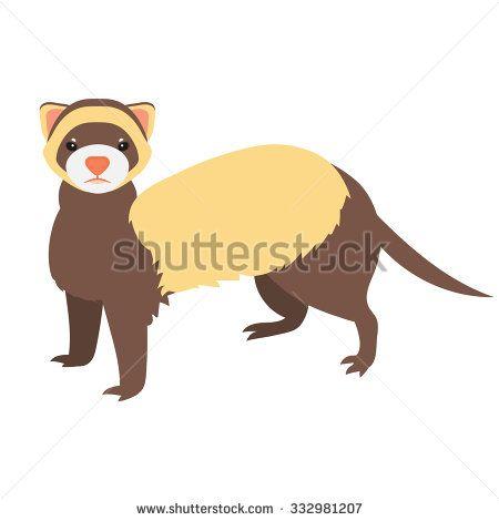 450x470 Flat Ferret Illustration