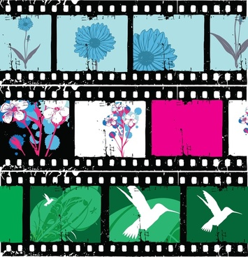 355x368 Floral Film Strips Vector Png Images, Backgrounds And Vectors For