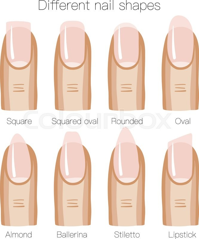 666x800 Set Of Different Shapes Of Nails. Vector Illustration Stock