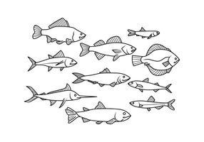 286x200 Fish Free Vector Art