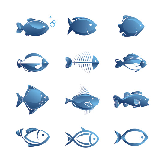 Fish Illustration Vector